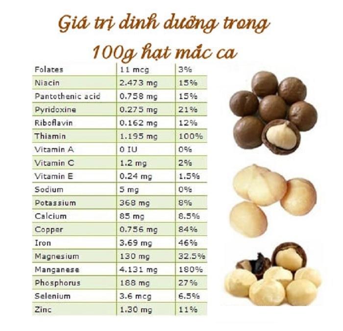 Trong mỗi hạt macca bao nhiêu calo?