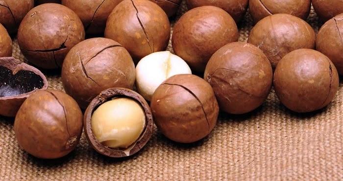 Giá trị dinh dưỡng của hạt macca