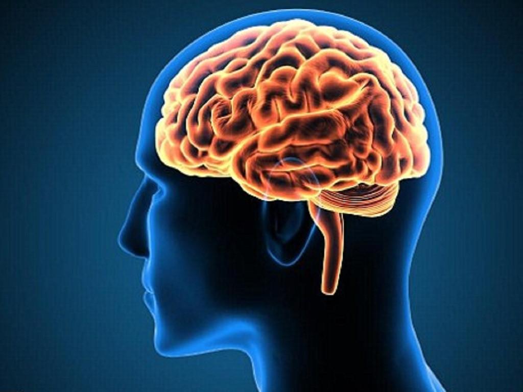 Ăn hạt điều tốt cho việc cải thiện chức năng não