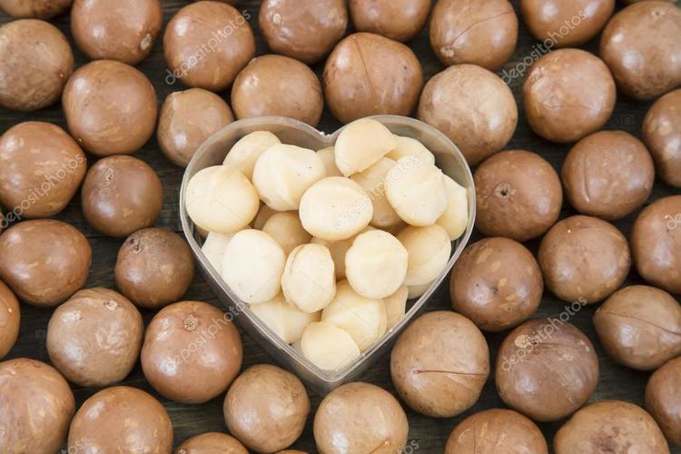 Ăn hạt macca thường xuyên sẽ giúp bạn có một trái tim khỏe mạnh hơn