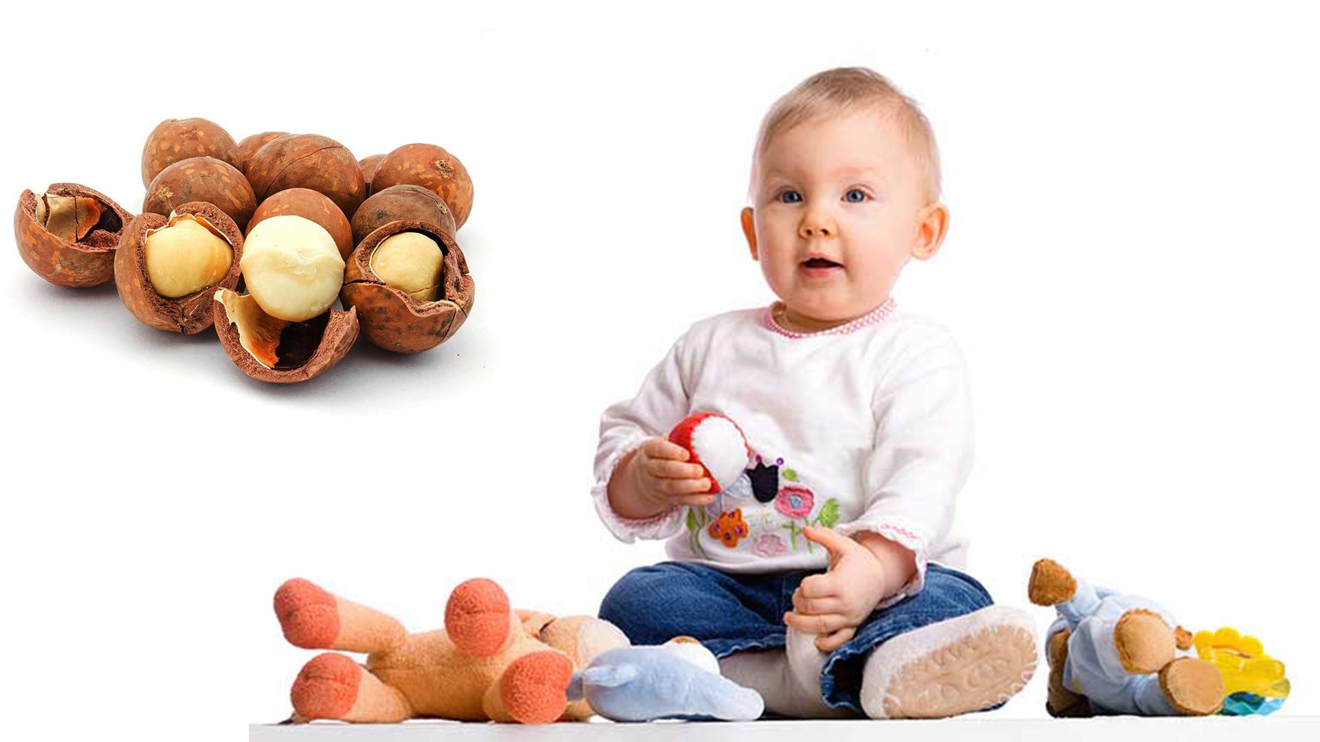 Hạt macca giúp trẻ phát triển hệ xương và hệ thần kinh khỏe mạnh