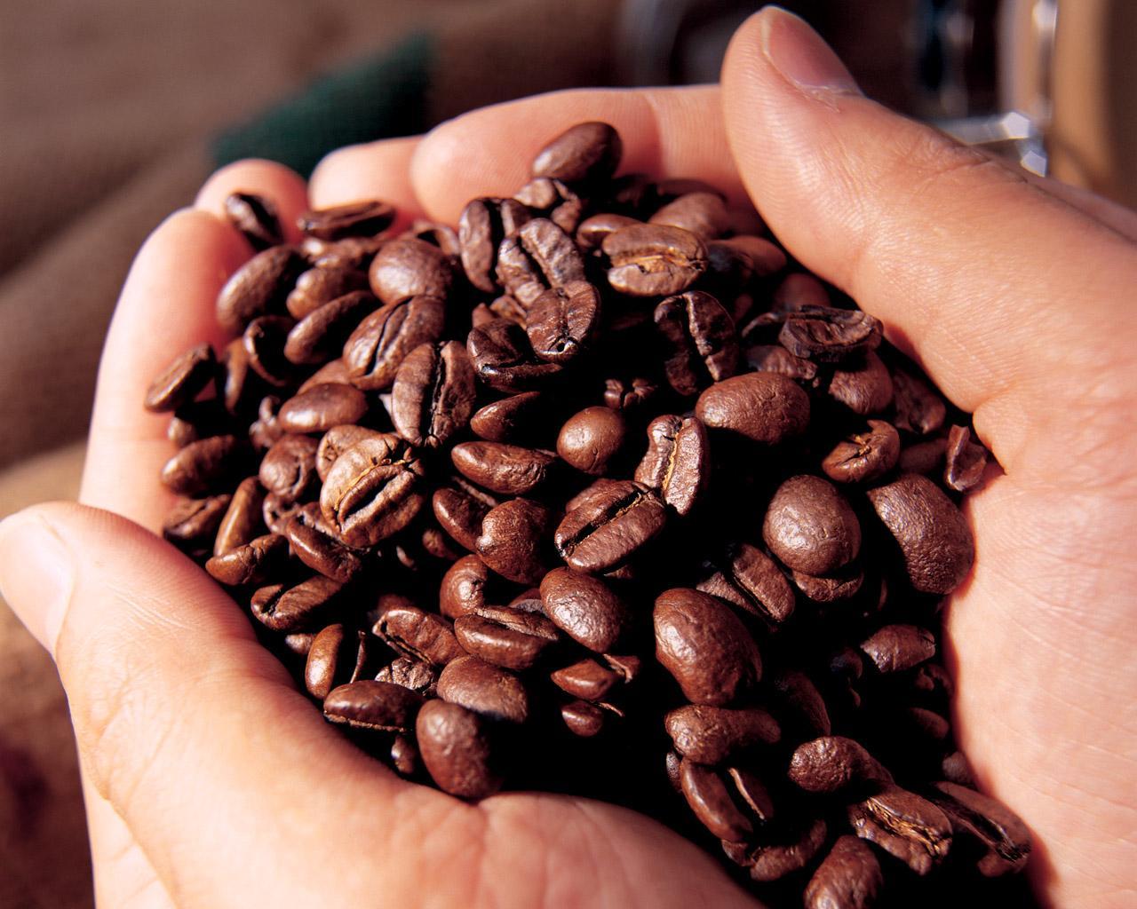 Không phải ai cũng biết lựa chọn cà phê nguyên chất