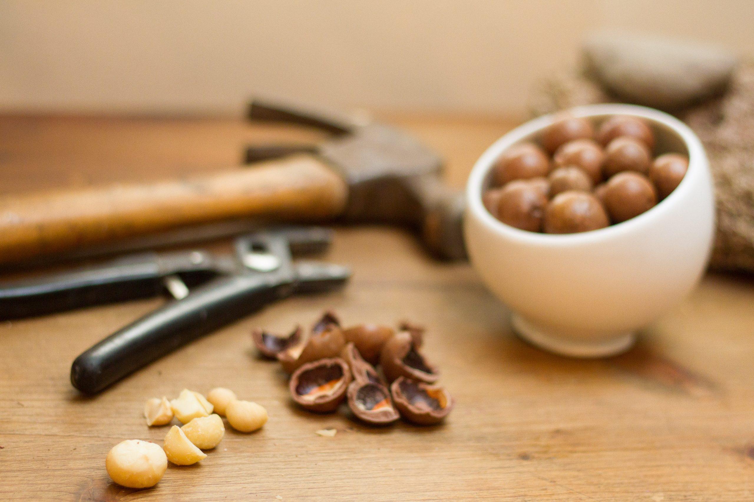 Hạt macca có thể chế biến cùng nhiều món ăn